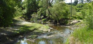 Река Труев. Фото министерства лесного, охотничьего хозяйства и природопользования Пензенской области