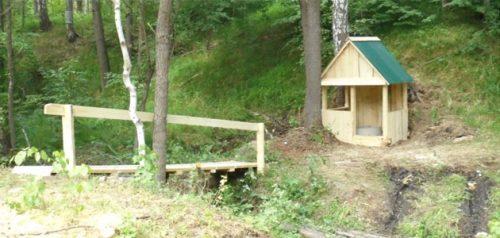 Мачимский родник. Фото министерства лесного, охотничьего хозяйства и природопользования Пензенской области