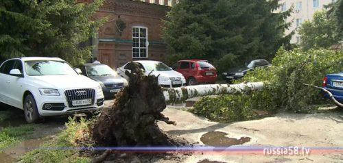 Последствия урагана в Пензе