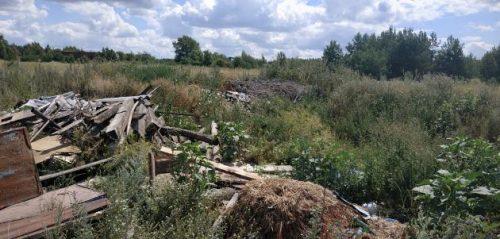 Фото министерства лесного, охотничьего хозчйства и природопользования Пензенской области