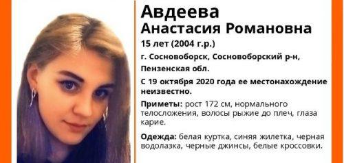 Фото поискового отряда «Лиза Алерт» Пензенской области