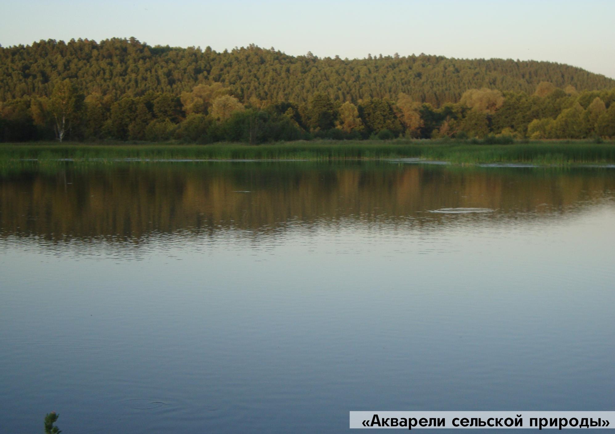 Фото предоставлено министерством культуры и туризма Пензенской области