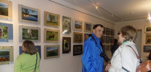 Фото пресс-службы заповедника «Приволжская лесостепь»