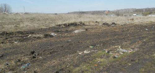 Фото пресс-службы министерства лесного, охотничьего хозяйства и природопользования Пензенской области