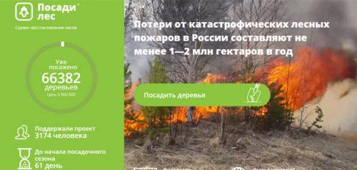 Посади лес