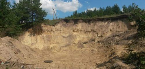 Песчаный карьер. Фото Минлесхоза Пензенской области