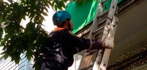 Фото пресс-службы управления жилищно-коммунального хозяйства и гражданской защиты населения Пензенской области